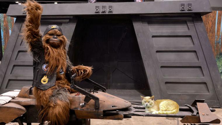 Chewbacca montando speeder con gato