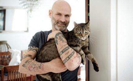 1617196339 Los 10 nombres de gatos masculinos mas populares ¡y algunas