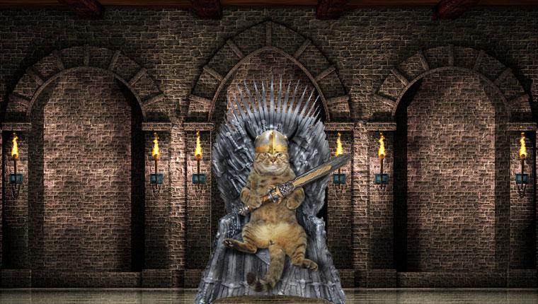 gato en el trono de hierro de juego de tronos